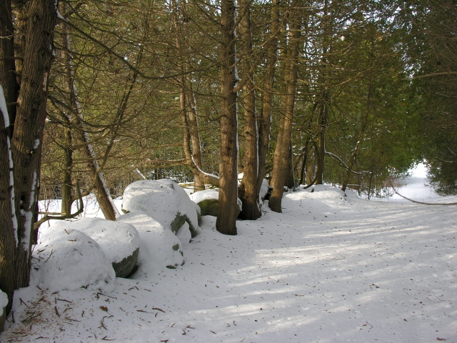 Snow walking trail.